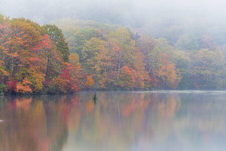 Kagamiike pond in autumn season with foggy weather, Nagono, Japan.