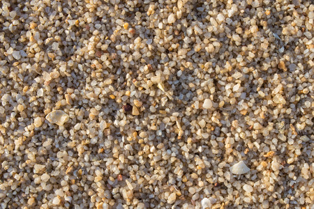 sandy brown: Sand texture