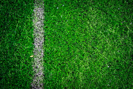 sports field: Football soccer field
