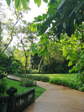 The Garden in Suan Luang Rama 9 Park. Bangkok, Thailand 스톡 콘텐츠