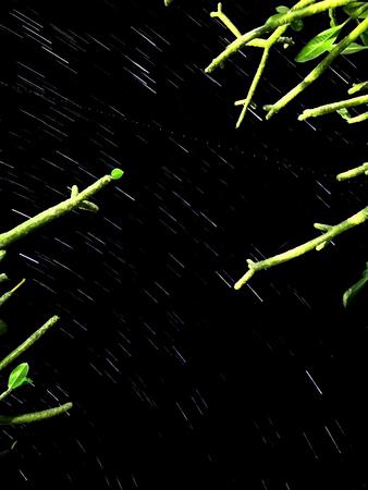 Black sky at night with stars 스톡 콘텐츠
