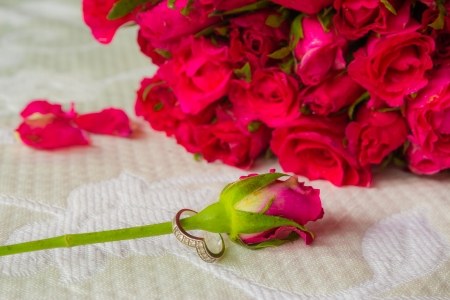 Close up of engagement ring with pink roses on white background photo