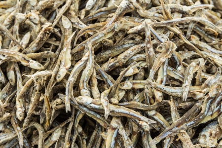 Dried small fish used in Asian cuisine photo