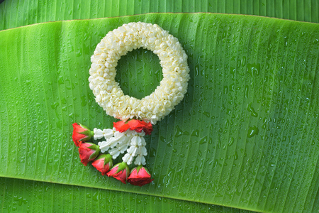 Thai traditional jasmine garland.symbol of Mothers day in thailand on Banana leaf.