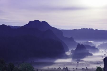 lang: night mist cover tree and mountain At Phu Lang Ka, Phayao, Thailand