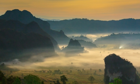 blue mountains tree frog: night mist cover tree and mountain At Phu Lang Ka, Phayao, Thailand