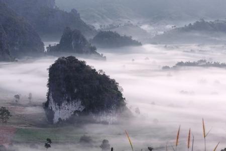 blue mountains tree frog: morning mist cover tree and mountain at Phu Lang Ka, Phayao, Thailand Stock Photo