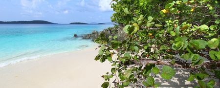 st  john: Solomon Beach on St John - US Virgin Islands.