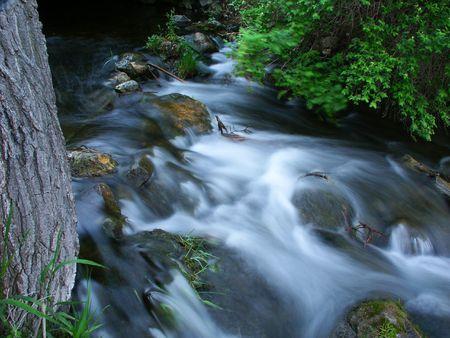 bluff: Bluff Creek State Natural Area - Wisconsin