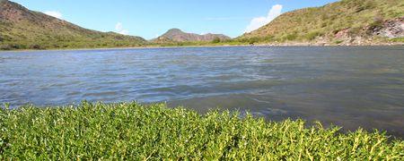 majors: Lagoon on Saint Kitts