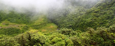 dropoff: Fog descends into The Crater of Saint Kitts.