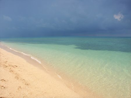 Beach on the Low Isles of Queensland, Australia Stock Photo - 7471709