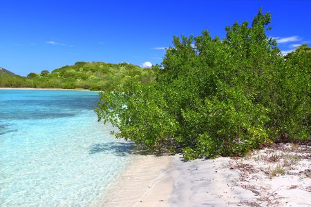 Beach in British Virgin Islands photo