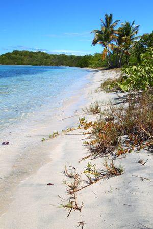 Beautiful beach in the British Virgin Islands photo