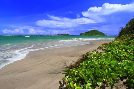 Tropical beach on the Caribbean island of Saint Lucia. Stock Photo