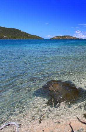 A scenic view of the British Virgin Islands. photo