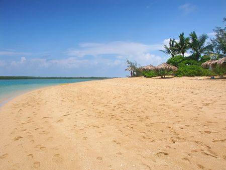 Tropical beach on the Low Isles in beautiful Queensland, Australia. Stock Photo - 7926753