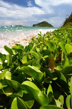 Waves splash against the coast at Anse de Sables Beach in Saint Lucia photo