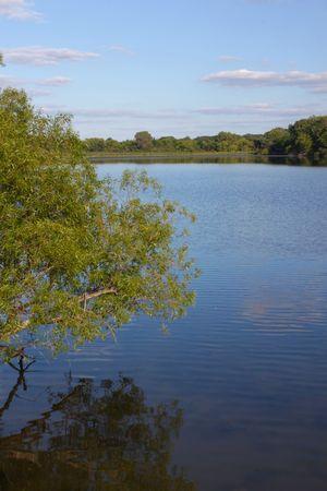 durchstechen: Sicht von Pierce Lake im Rock Cut State Park in northern Illinois Lizenzfreie Bilder