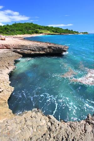 Karibische Küste bei Guanica trocken Forest Reserve - Puerto Rico Standard-Bild - 8626319