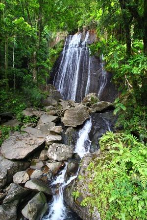 La Coca Falls in the famous El Yunque Rainforest of Puerto Rico (USA)