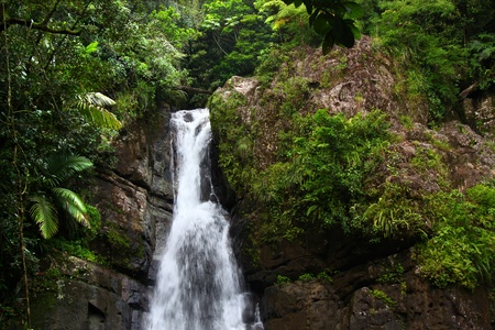 Beautiful La Mina Falls of the El Yunque National Forest in Puerto Rico Stock Photo