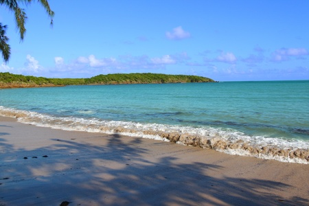 rico: Seven Seas Beach near Fajardo in Puerto Rico