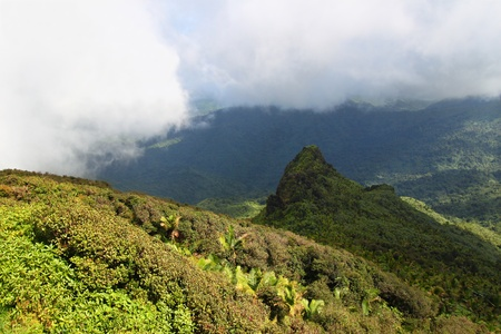 Mist covers the rainforest peaks of El Yunque National Forest in Puerto Rico photo