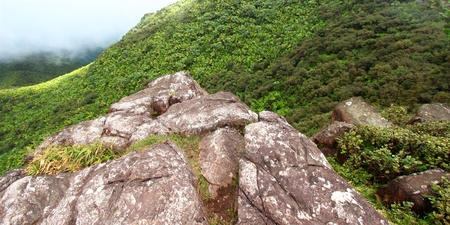 View of the Puerto Rican landscape from the El Yunque Peak photo