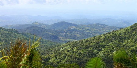 Blick auf die Puerto-ricanische Landschaft von El Yunque Peak Standard-Bild - 9349905