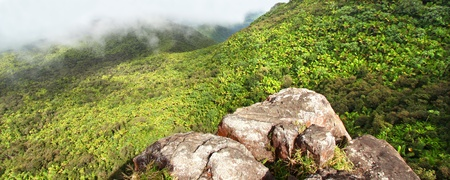 Misty clouds sweep over the rainforest in the mountains of El Yunque National Forest - Puerto Rico. photo