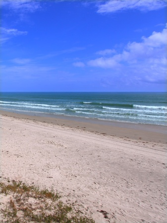 shoreline: Beautiful Ormond Beach along the east coast of Florida.