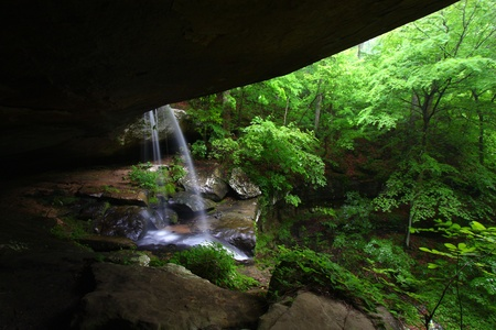Waterfall flows into a deep canyon in the woodland of northern Alabama Stock Photo - 9381972