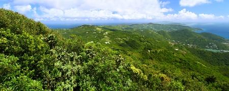 Panoramic view of Tortola from Sage Mountain National Park - British Virgin Islands photo