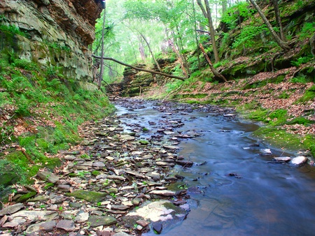 state of wisconsin: Slot canyon running through Pewits Nest State Natural Area near the Wisconsin Dells