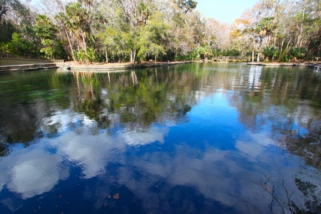 reflect: Clouds reflect off the waters of Wekiwa Springs State Park in central Florida