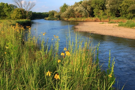 Kishwaukee River flows through Illinois on a beautiful day photo