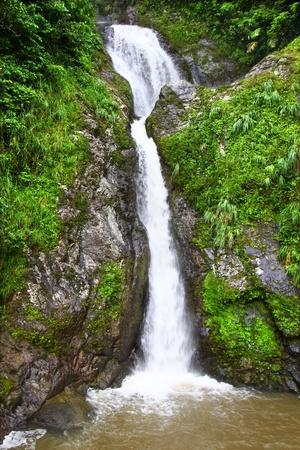 Beautiful Dona Juana Falls in the Cordillera Central rainforests of Puerto Rico photo