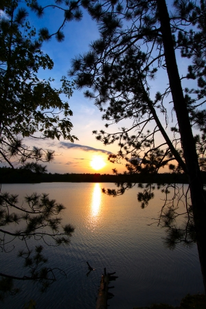 Beautiful sunset seen through pine trees over a northwoods Wisconsin lake
