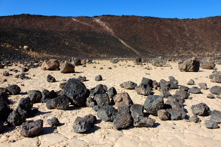 outoors: Volcanic rock scatters the center of Amboy Crater in the deserts of southern California