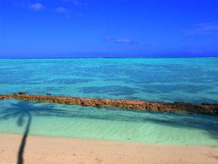 polynesia: The crystal clear lagoon on the island of Moorea - French Polynesia
