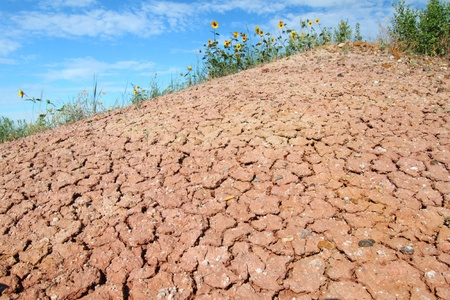 parch: Patterns in the parched ground of Badlands National Park in South Dakota Stock Photo