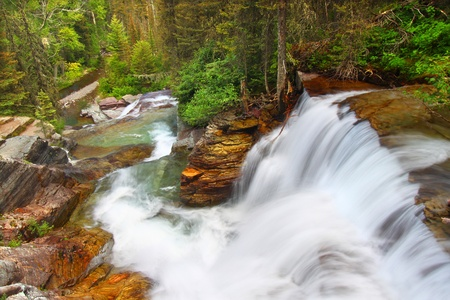 Beautiful waterfall flows through the pine forests of Glacier National Park in Montana photo