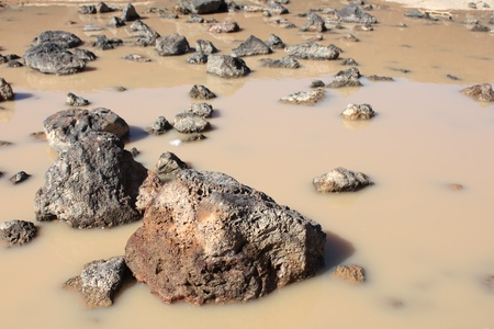 outoors: Small puddle at the bottom of Amboy Crater in the deserts of southern California
