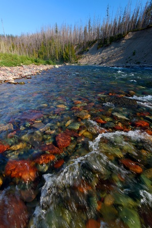 flathead: Rapids of the North Fork Flathead River on the border of Glacier National Park Stock Photo