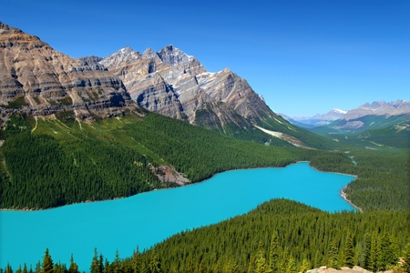 Magnificent blue waters of Peyto Lake of Banff National Park in Canada