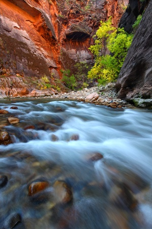 narrows: Smooth cascades of the Virgin River flow through The Narrows of Zion Canyon in Utah Stock Photo