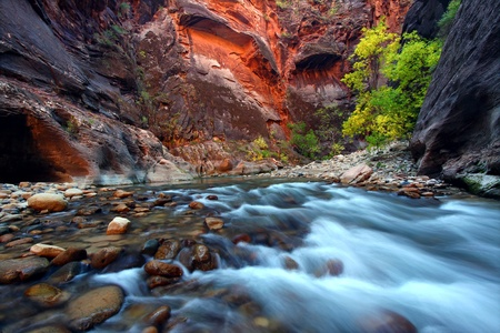zion: Virgin River cascades in the The Narrows of Zion Canyon - southwest Utah Stock Photo