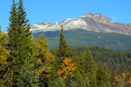 pyramid peak: Pyramid Mountain rises high above the forests near the Canadian town of Jasper Stock Photo