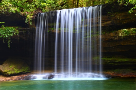 Upper Caney Creek Falls in the William B Bankhead National Forest of Alabama Archivio Fotografico